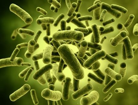 microbio: Bacterias células con el foco selectivo