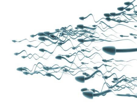 cells isolated on white  Standard-Bild