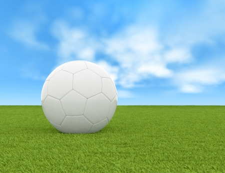 soccer ball on green grass photo