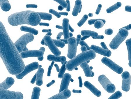 bacterias: Las células bacterianas aisladas sobre fondo blanco