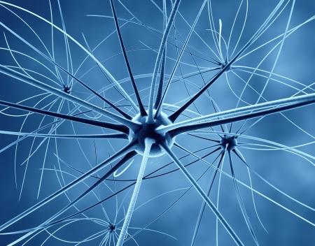 De hersenen neuronen en het zenuwstelsel Stockfoto
