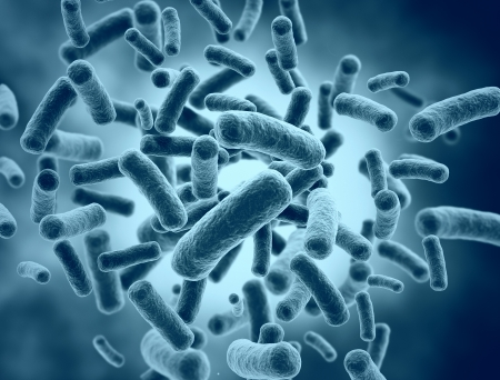 Las c�lulas bacterianas - ilustraci�n m�dica photo
