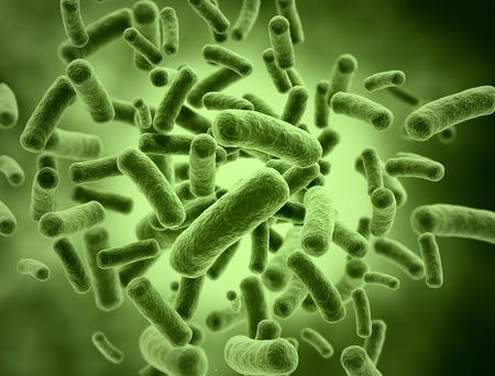Bacteria cells  medical illustration