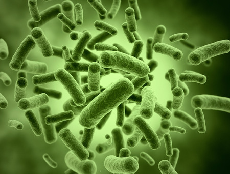 bacterias: Bacterias células ilustración médica