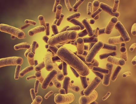 Bacteria cells close up  High resolution 3d render  photo