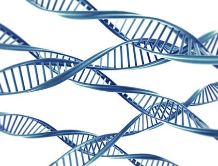 Cadenas de ADN de doble hélice aislados sobre fondo blanco