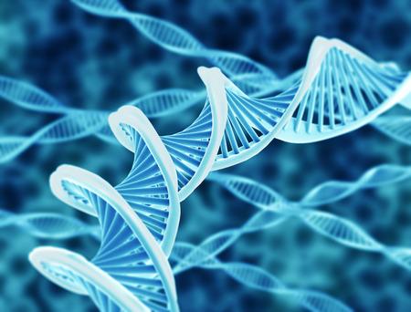 adn humano: De alta resoluci�n de procesamiento de ADN de doble h�lice Foto de archivo