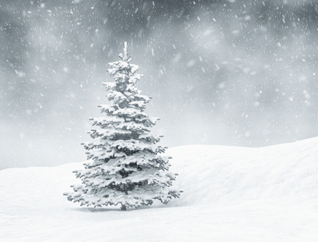 Christmas background, snow and pine tree