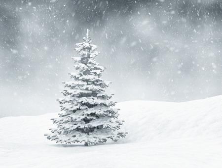 Kerst achtergrond, sneeuw en pijnboom Stockfoto
