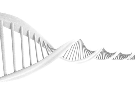 DNA spiral isolated on white background  photo