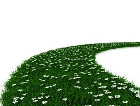 daisys: Road made of green grass and daisys