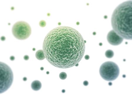 globulos blancos: Las células bacterianas aisladas sobre fondo blanco
