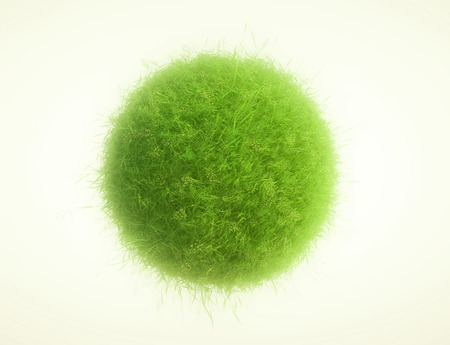 green grass: Green grass and plants spheres