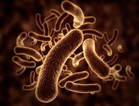 e coli: Bacteria cells 3d illustration Stock Photo