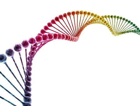 Spirale del DNA multi colore isolata su fondo bianco Archivio Fotografico
