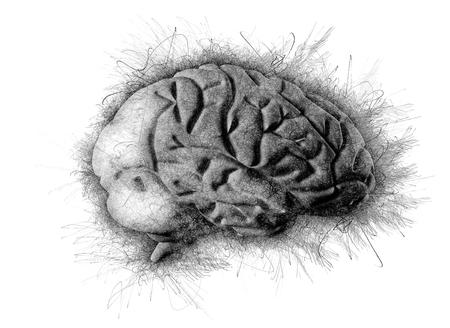 Brain artistic pencil sketch drawing