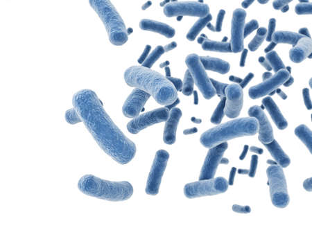 Bacteria eclls isolated on white background