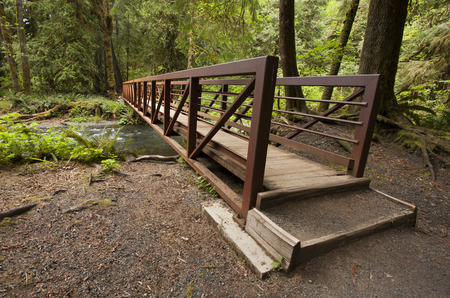 Wide angle photo of wooden Nature Bridge end near Marymere Falls Stock Photo