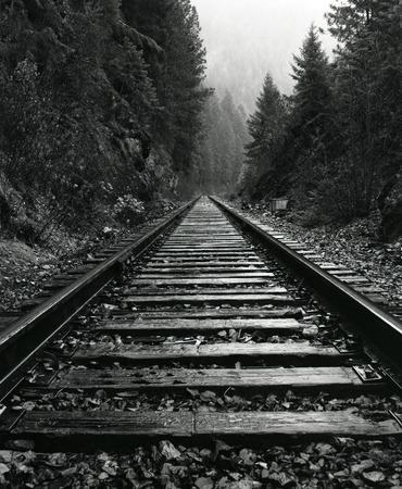 North Idaho Train Tracks 스톡 콘텐츠