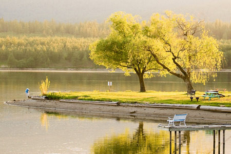 Spring Time Serenity Golden Hour at the Lake