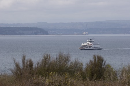 Horizontal Photo of a Washington State Ferry boat with bushes in the foreground