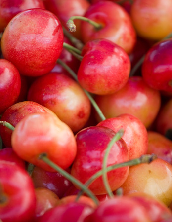 Rainier cherries with stems abstract background