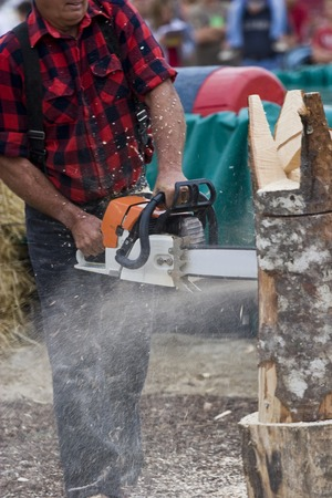 Chainsaw Sculptor carving log sculpture with spectators in background
