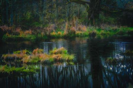 photomanipulation: Digitally altered image producing a fantasy surreal effect. Digital impressionism, photo-manipulation