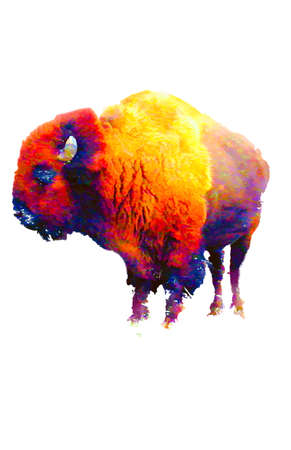 Digital impressionism abstract colorful bison on white background Imagens