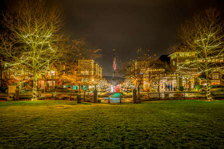 Impressionistic view from a park down street decorated with Holliday lights.