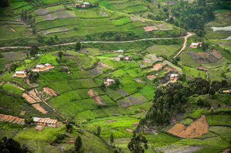 an agricultural district: The hills and the valleys of Kabale Highland District in Southern Uganda on the border of Rwanda is covered in agricultural land for cash crops.