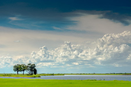 Lanscape at Chobe River looking towards the Namibia Pan Handle side of the river with white clouds, blue sky, and green landscape, and the river being visible.