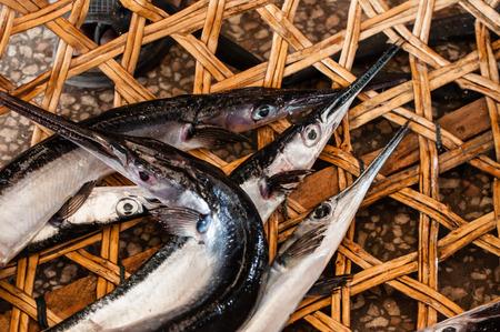 sold small: Piccolo Baracuda in un cesto presso il mercato del pesce a Stone Town, Zanzibar, per essere venduto al mercato del pesce.
