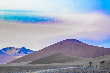 Surreal landscape in the Namib Desert at sunrise photo