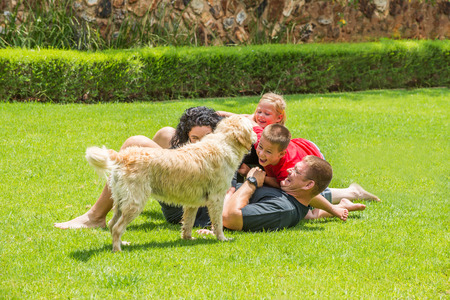 The whole family, including the dog, are having fun outside on the lawn. Stock Photo