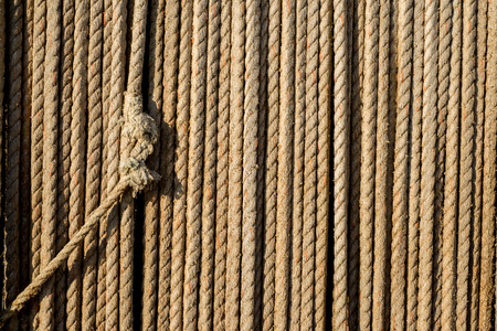 plies: Natural rope made of fibre as background with knot in foreground.