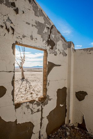 derelict: View of a dead tree from the window of a derelict house with no roof in the desert. Stock Photo