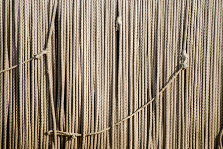 plies: Lines of knotted ropes hang in front of vertically hanged ropes as background.