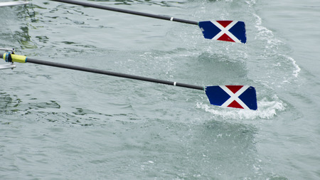 four classes: Two ores glide out of the water as a rowing team races forward. Stock Photo