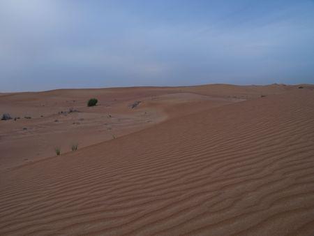 Desert, Dubai, UAE 版權商用圖片