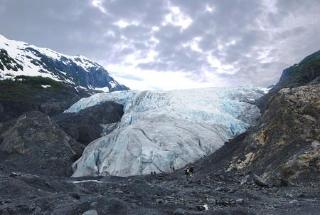 Exit Glacier Imagens - 12026898