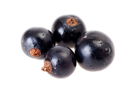 Four juicy black currants isolated on white background photo