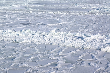 Frozen sea with flakes and pack ice photo