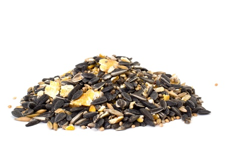 Pile of mixed bird seeds isolated on white