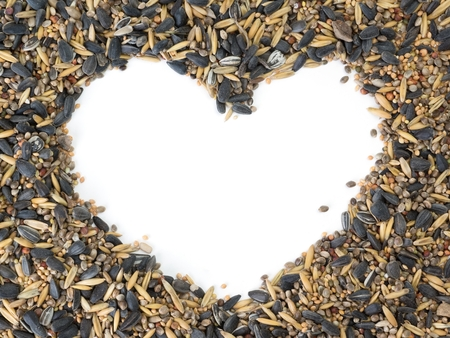 Birdseed around white copy space shaped as a heart photo