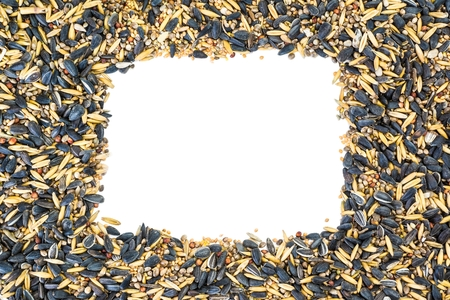 Mixed bird seeds with white rectangle copy space photo