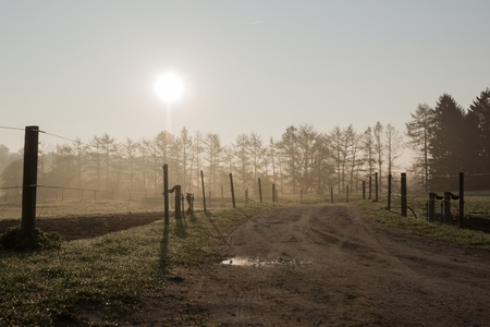 Backlit photo of dirt road and pastures with haze photo