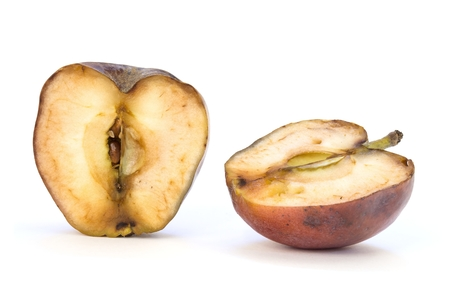 two and a half: Old apple cut in two half on white background Stock Photo