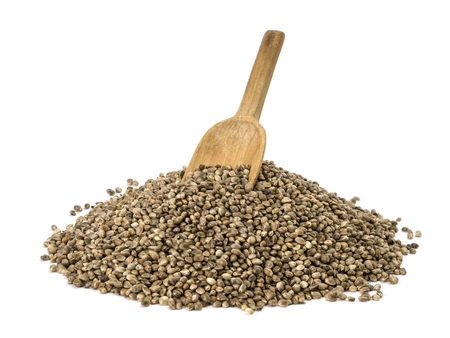 old spoon in pile of hemp seeds on white background photo