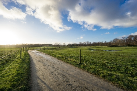 Pastures with electric fence and dirt road in back light photo